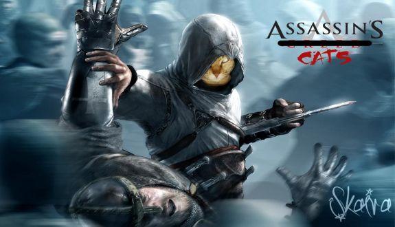 Karşınızda Kedilerin Assassin's Creed'i
