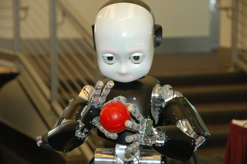 Çocuk Robot iCub Büyümeye Devam Ediyor