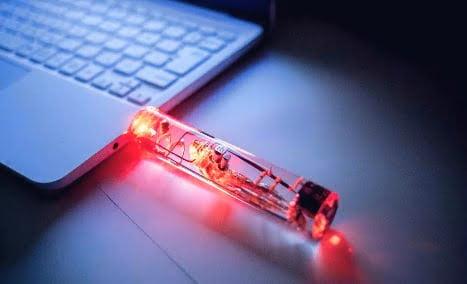 Japonlar küçük balık beyninden USB bellek yaptı, satışa sundu