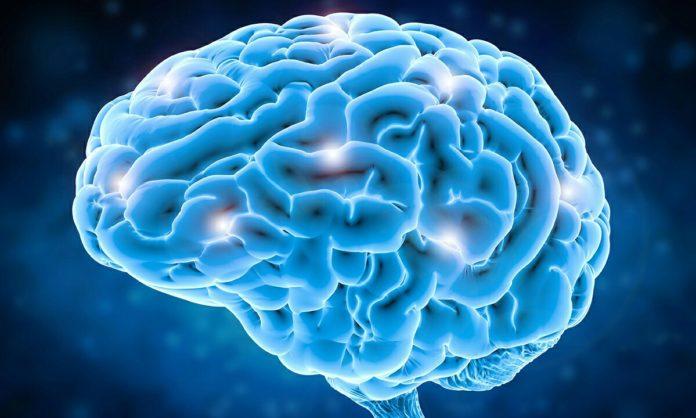 Bilimsel beyin çalışmaları