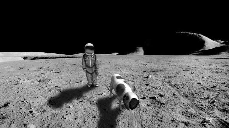 NASA göktaşından numune toplayacak