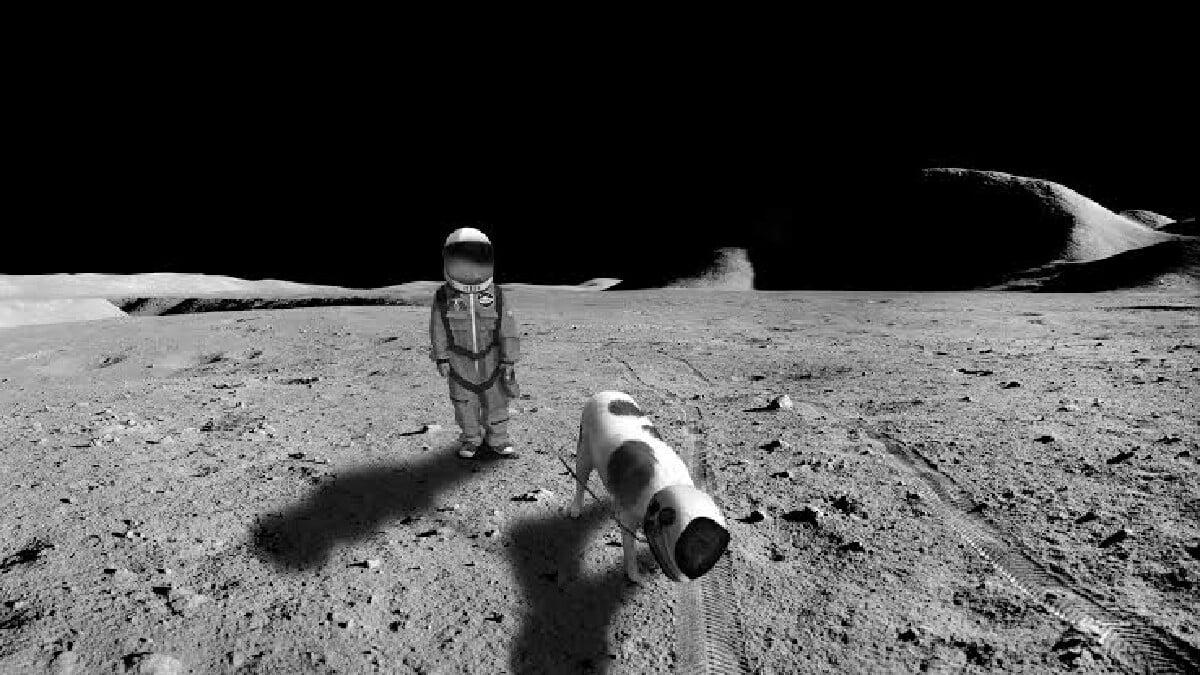 uzay turistleri servet