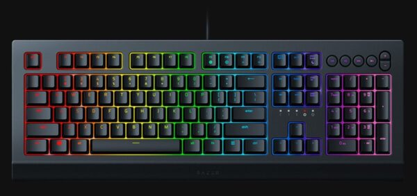 Razer Cynosa V2 RGB oyuncu klavyesi: Her tuşu ayrı ayrı renklendirin