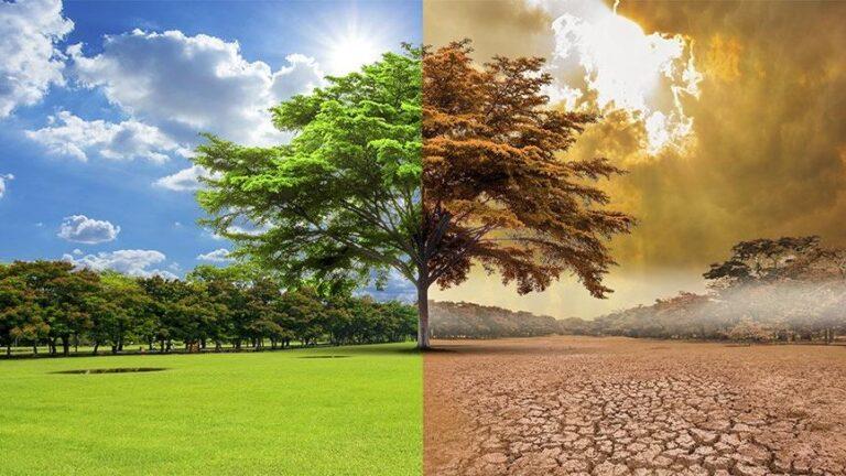 İklim değişikliği korkutucu sonuçlar doğurabilir! Bilim insanları açıkladı